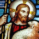 O pastor, os pastores e a pastoral