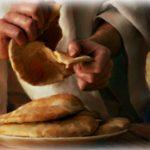 O pão da multidão e a voz da Igreja